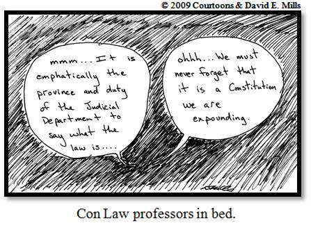 Con Law Profs Courtoon